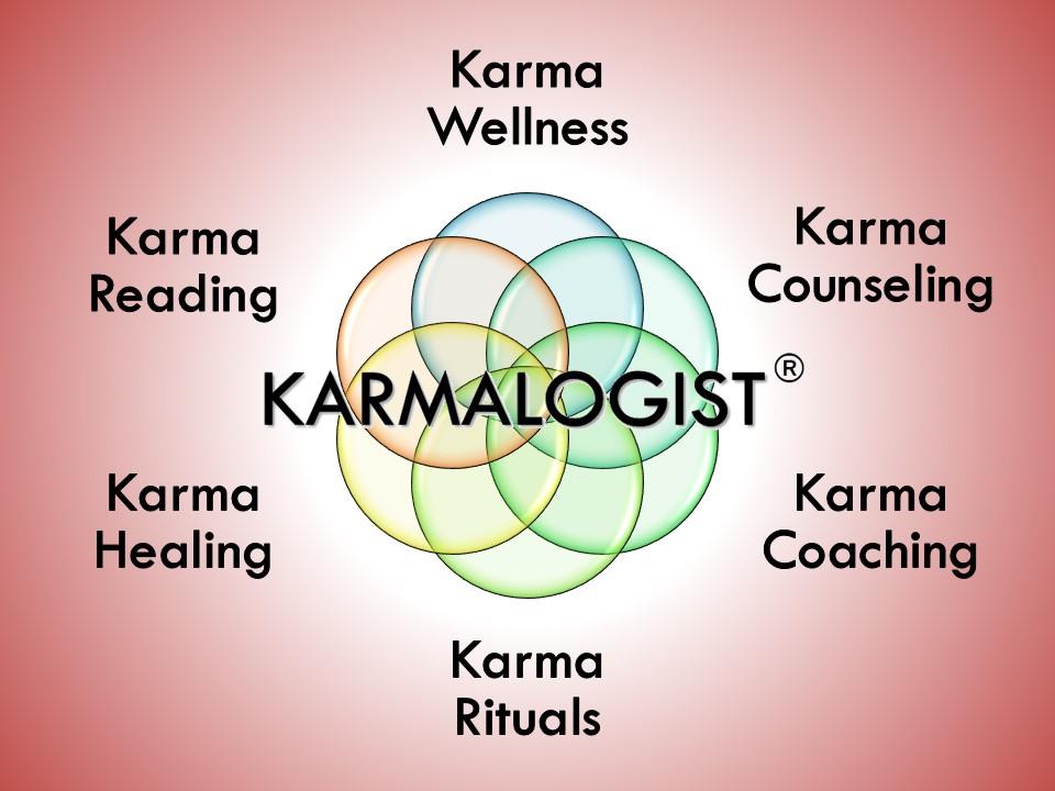 Vijay Batra Karmalogist (Counselling & Coaching)